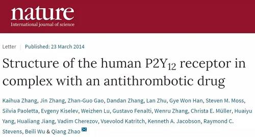 南昌大学张进教授澄清:两篇Nature论文作者确为自己
