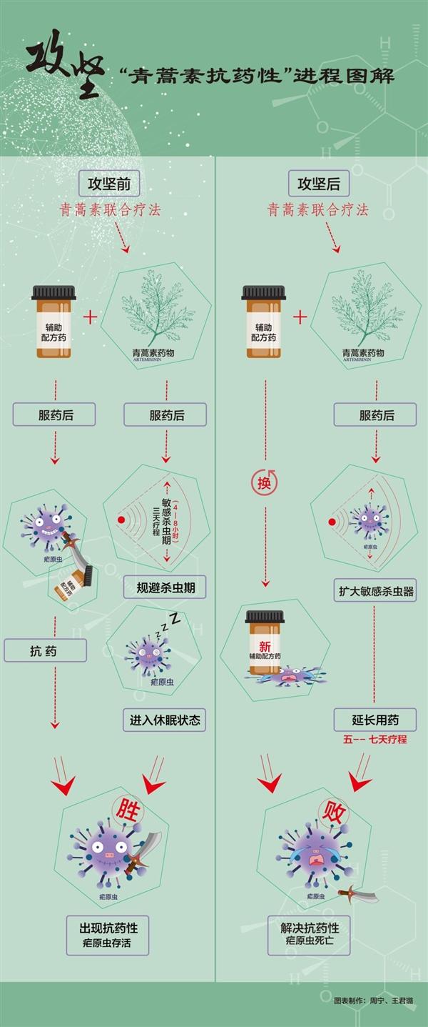 """屠呦呦团队放""""大招"""":""""青蒿素抗药性""""等研究获新突破"""