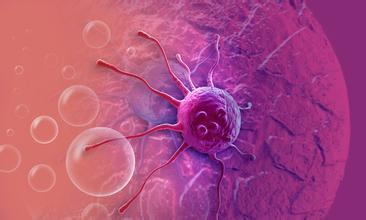 促使癌细胞死亡的分子途径被发现